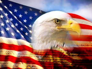 bald_eagle_head_and_american_flag