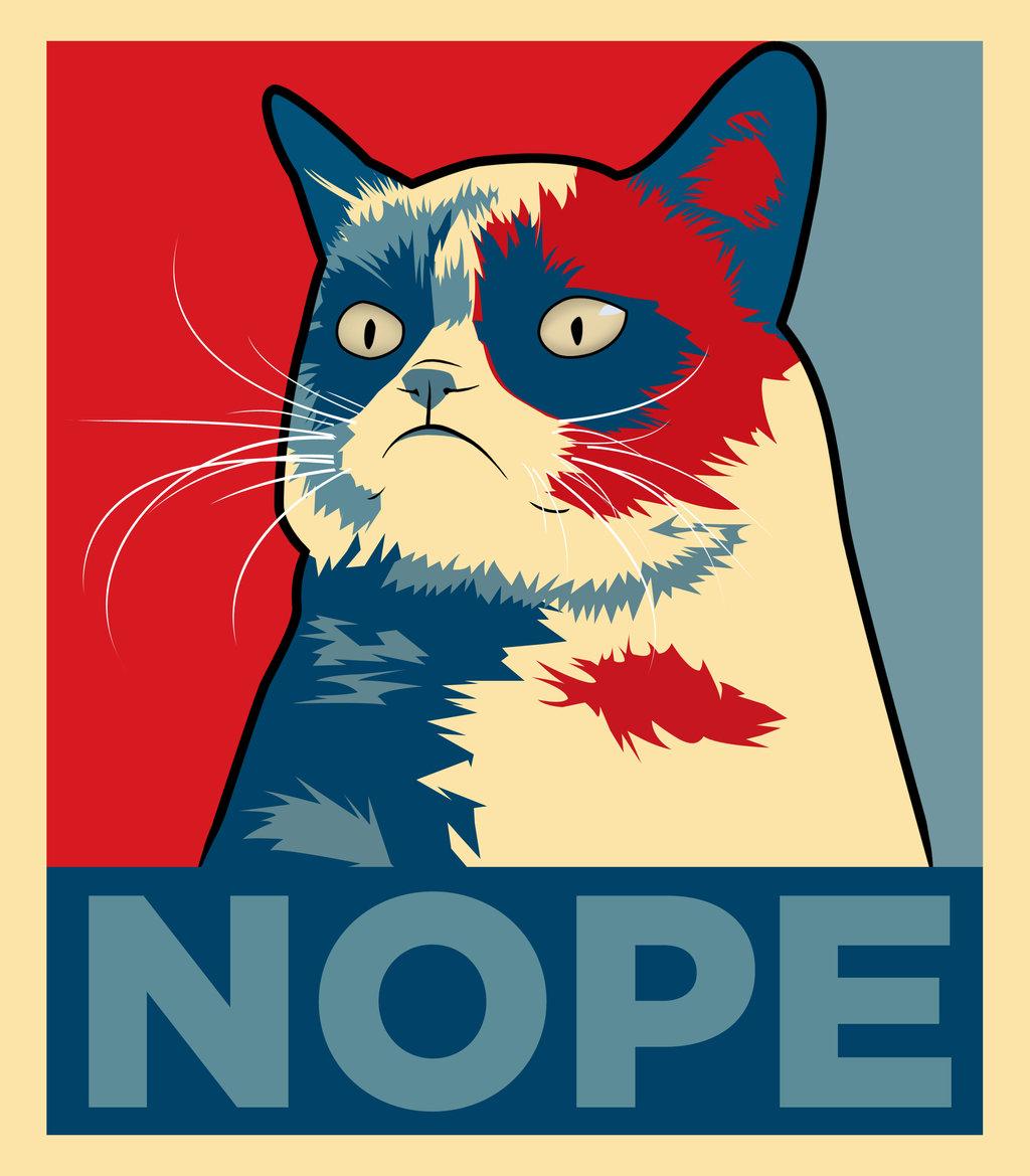 grumpy_cat__nope_by_imwithstoopid13-d624kvl